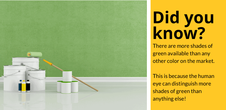 Did you know: There are more shades of green available than any other color on the market. This is because the human eye can distinguish more shades of green than anything else!