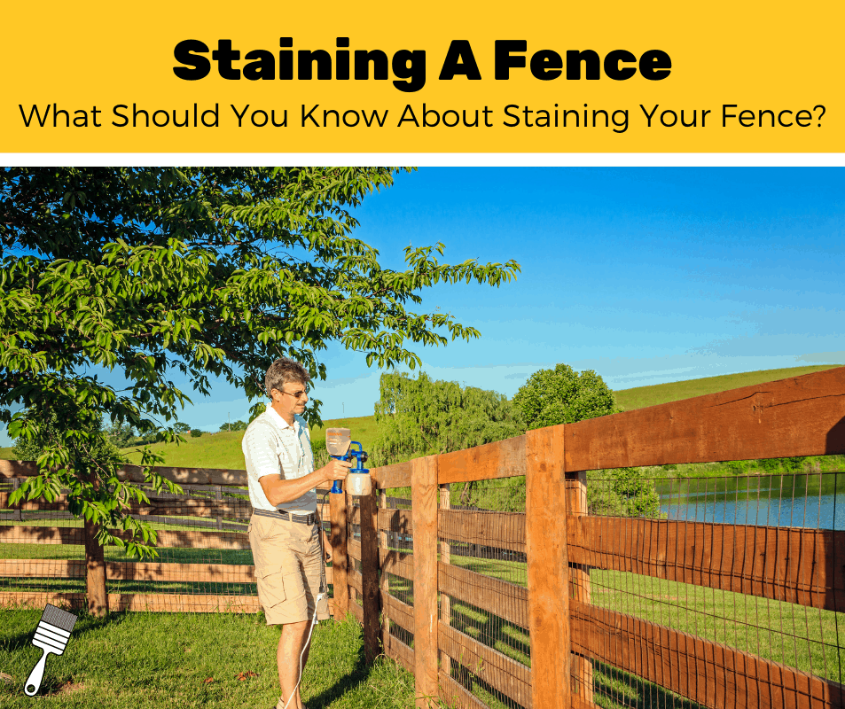 How To Stain A Fence? (5-Step Guide)